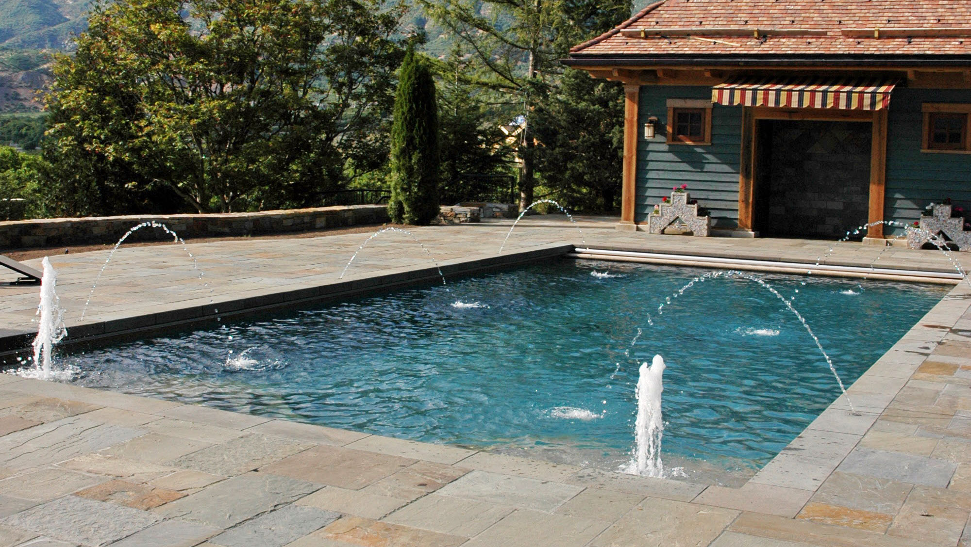 Pool Building Tips : Tips for designing the perfect pool dolphin pools spas