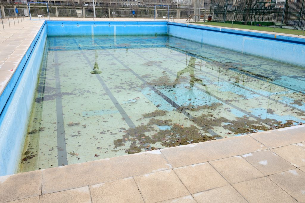 Pro tips to prevent damage to your swimming pool dolphin for Unused swimming pool